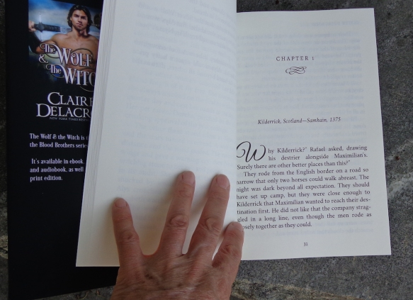 The Wolf & the Witch, hardcover large print edition